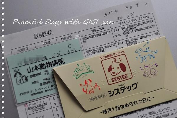01血液検査.JPG